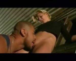 Zweedse porno