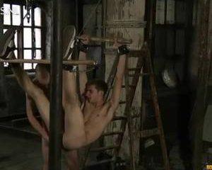 Hangend vastgebonden word hij anal gevingerd en geneukt